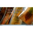 BMW ICOM NEXT A+B+C Software Screen