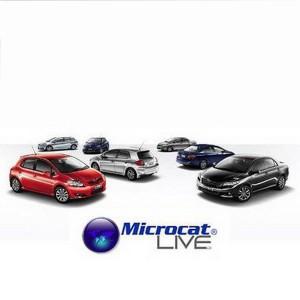 Toyota Microcat Live 03.2013